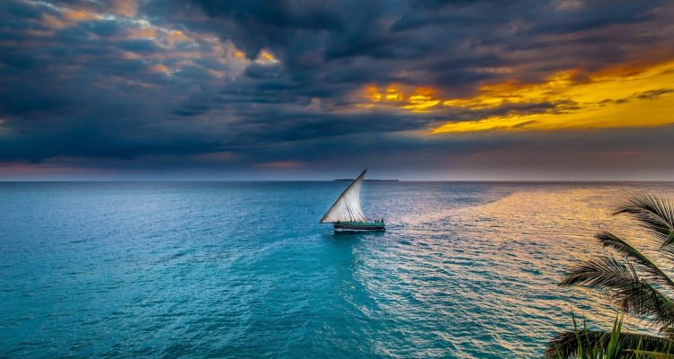 Sunset Zanzibar Dhow Sea Sailboat Africa Sky Water Beautiful Tanzania Tropical Island Palm Leaves Clouds HD Pictures